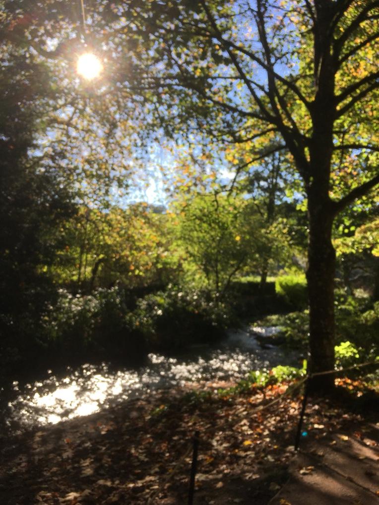 The River Garden at Dunster Castle.