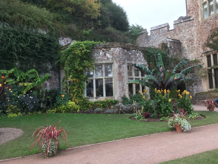 Dunster Castle Garden