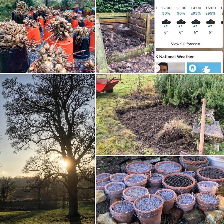 Gardening - six images on Saturday, or SixonSaturday