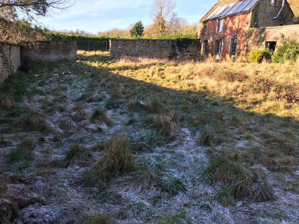 Frost in the walled garden