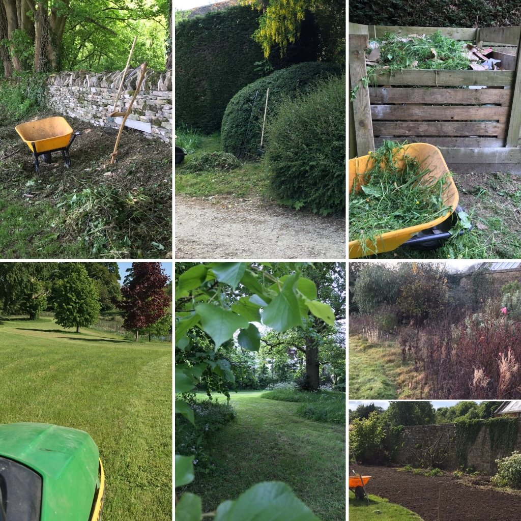 Scything, mowing, composting, digging, hedge trimming - a busy week indeed!