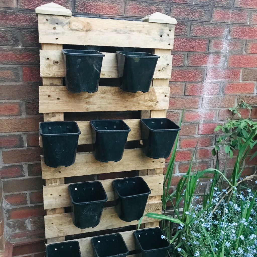 A recycled pallet using to make a vertical planter