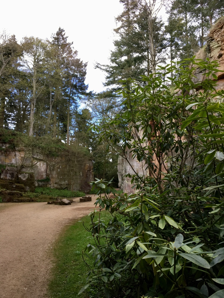 A view of the quarry garden at Belsay Hall, with shear rock faces and ornamental shrub planting