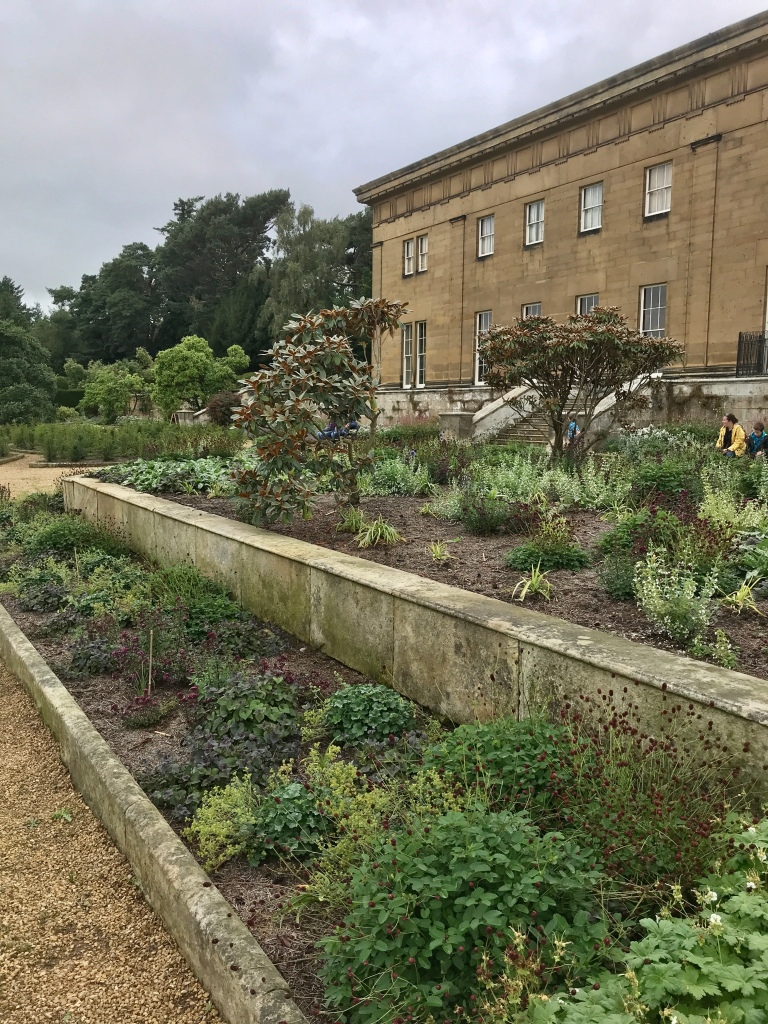 Dan Pearson's new planting  recently planted in the beds at Belsay