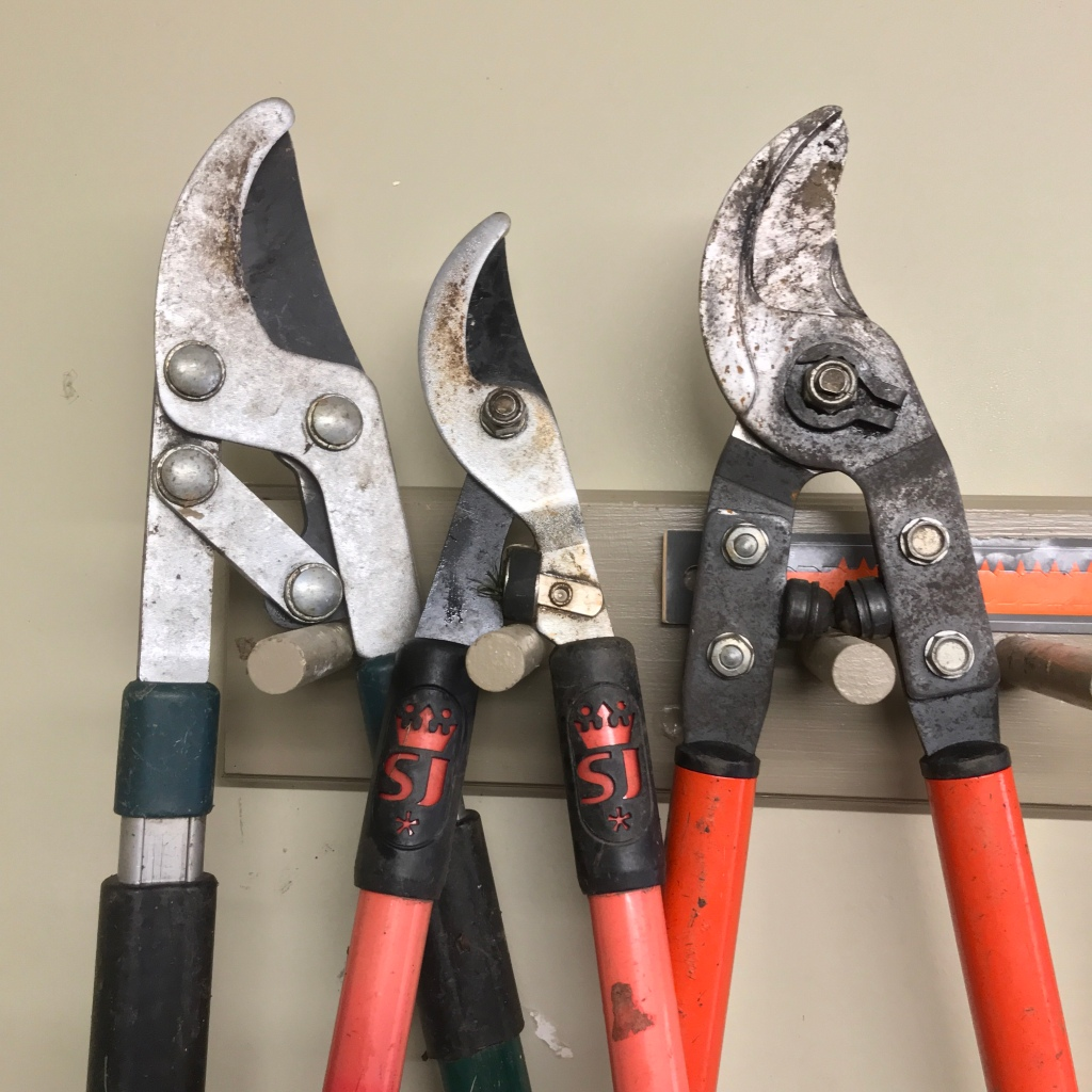 Garden pruners hanging on pegs in the tool shed