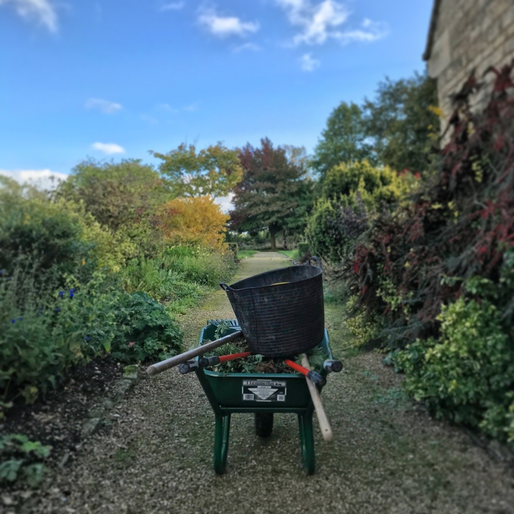 Along a new garden path at Sulgrave Manor, with a fully loaded wheelbarrow .