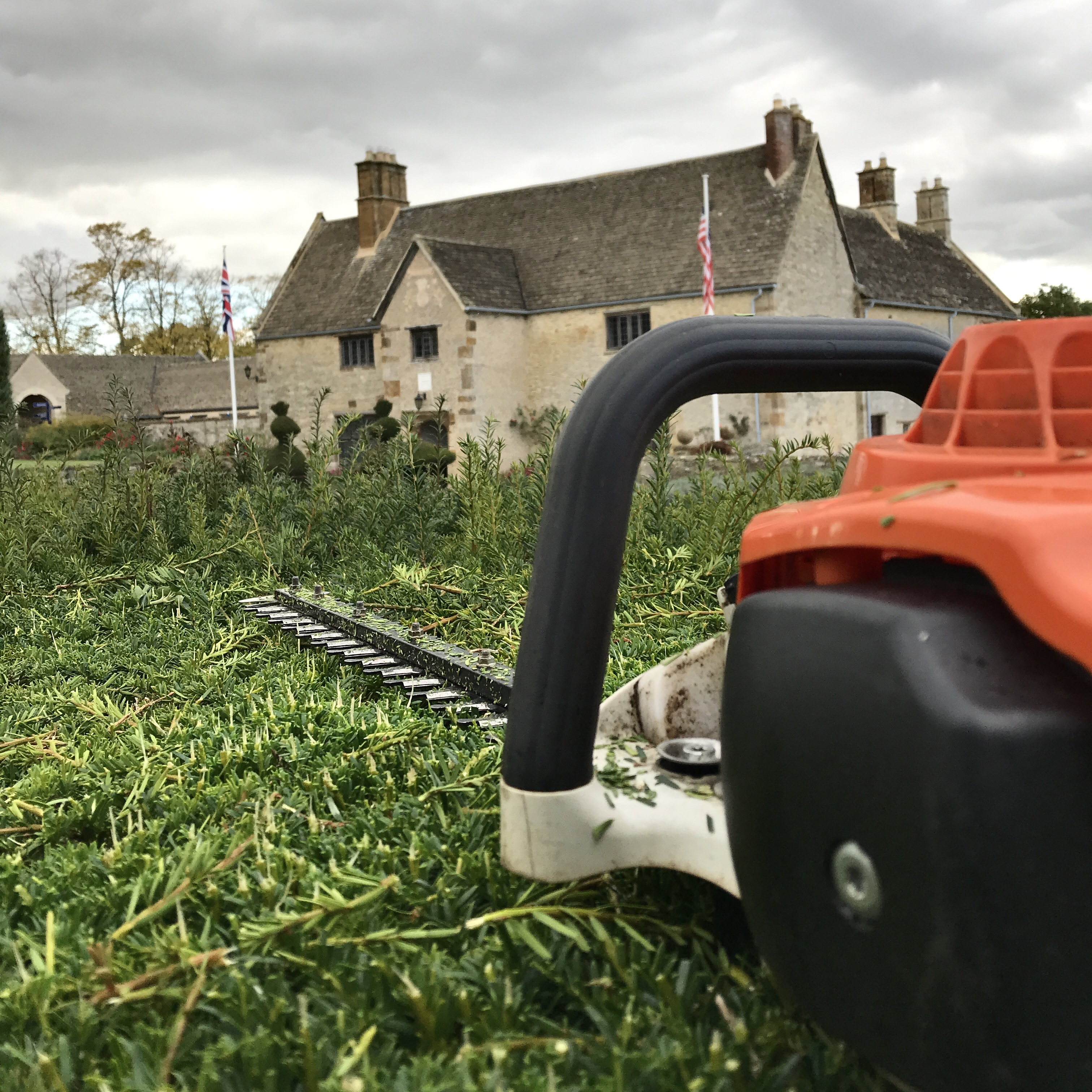 Hedge trimmer resting on the hedge top between trimming sessions... at Sulgrave Manor in Northants