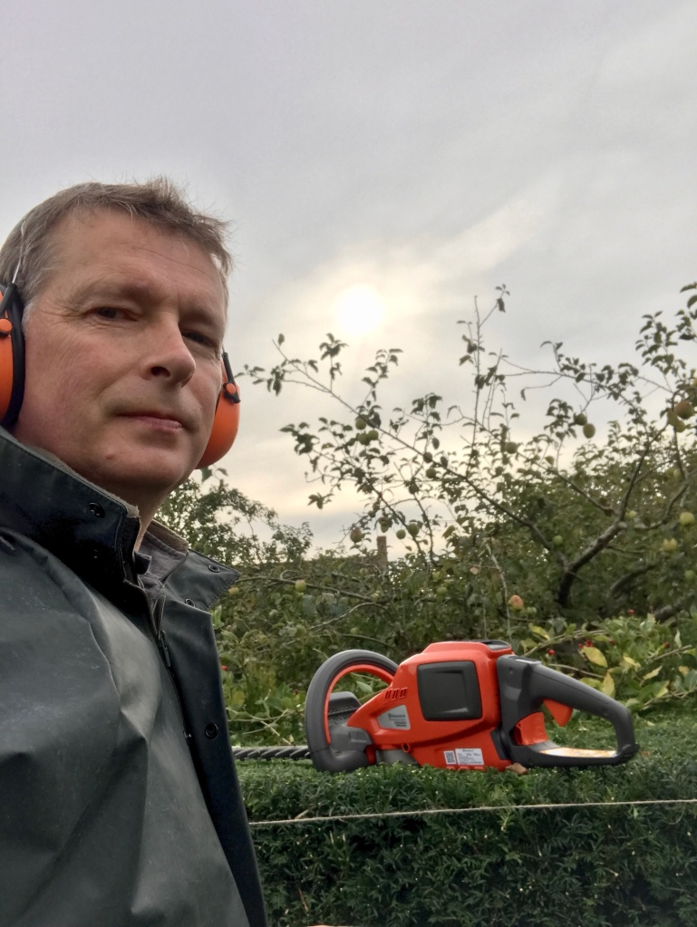 Gary Webb, Gardener, hedge cutting at Sulgrave Manor